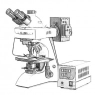 Оптические микроскопы